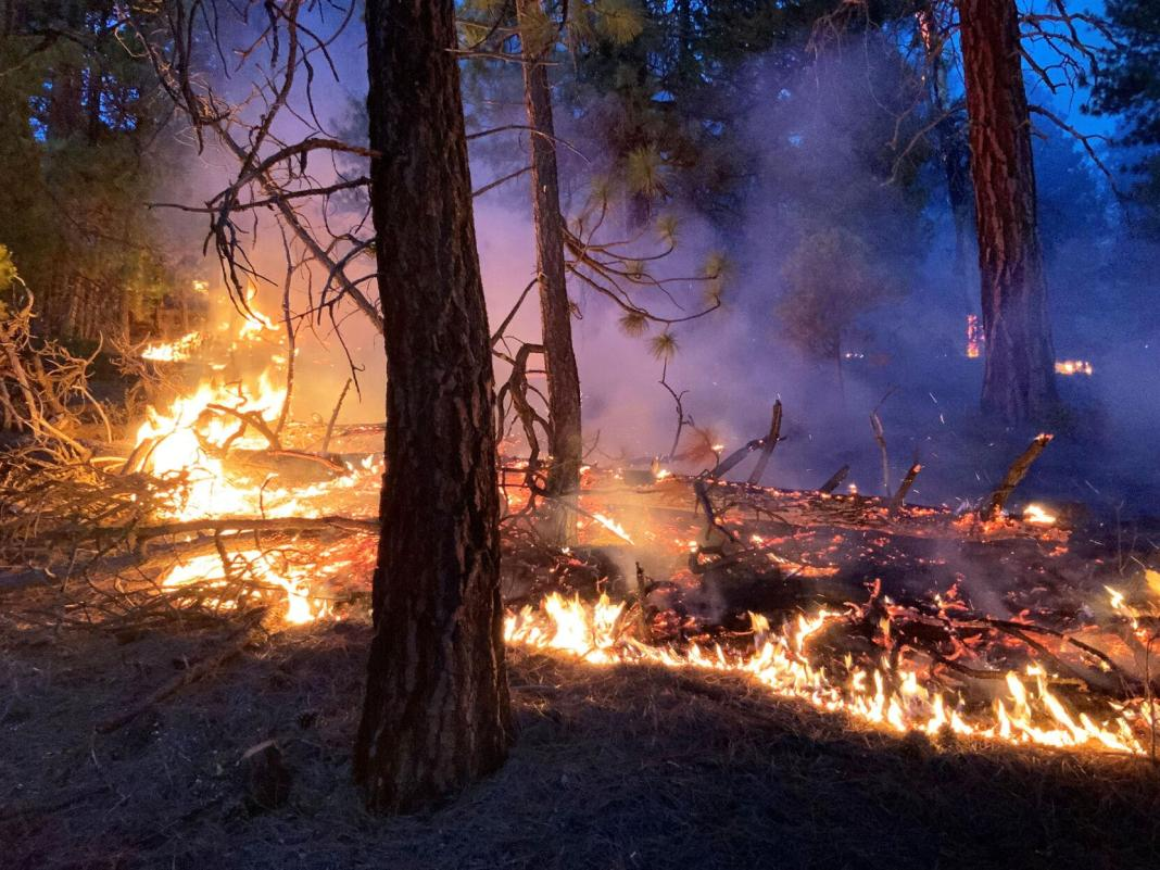 Cei doi silvicultori au fost prinşi de un incendiu care a izbucnit în apropierea unui sat din regiunea Sandanski