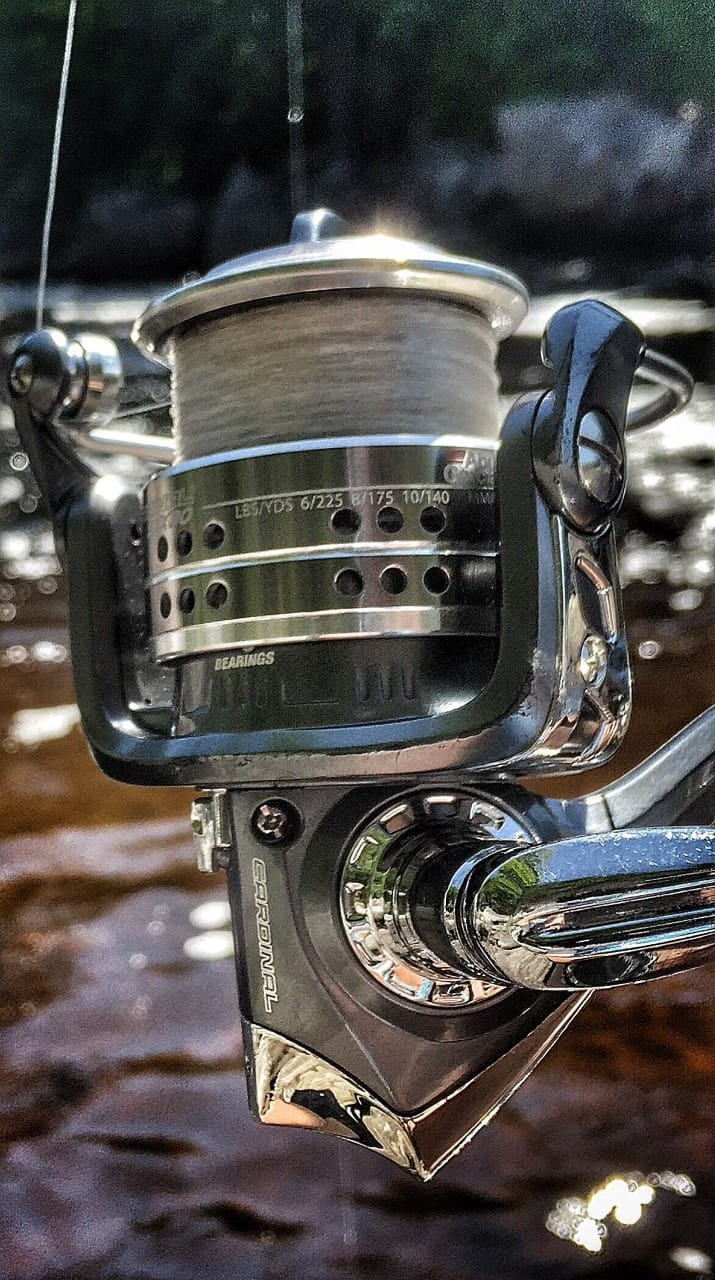 Abu Garcia Cardinal CARD STX30 Fishing Reel Review