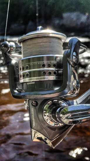 Abu Garcia Cardinal CARD STX30 Fishing Reel Review