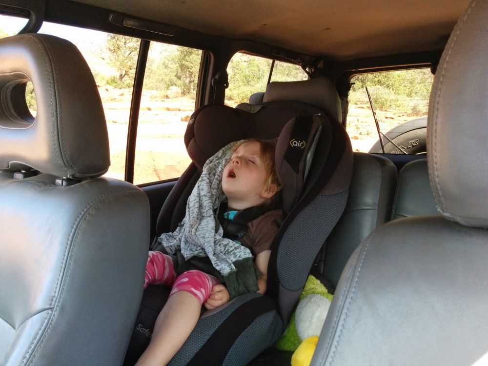 Penny slept through some serious mall crawling.   image: Brian Driggs