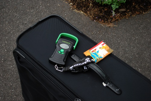 Balanzza digital airline luggage scale reviewed