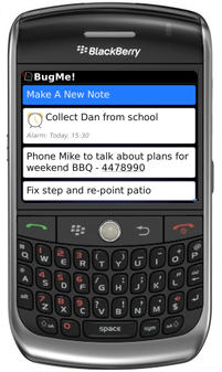 Now what was it I had to do?  Review: BugMe! for BlackBerry Phones