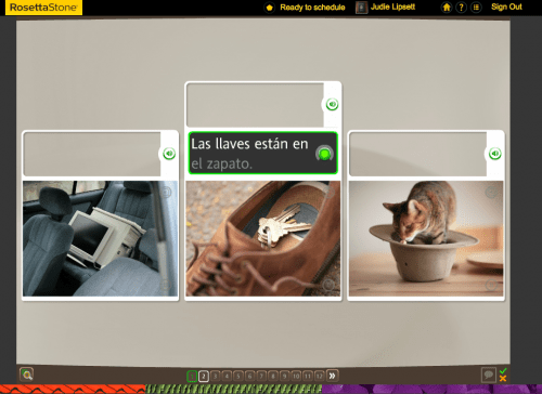 Teaching an Old Dog New Tricks: Week Five into the Rosetta Stone TOTALe Program