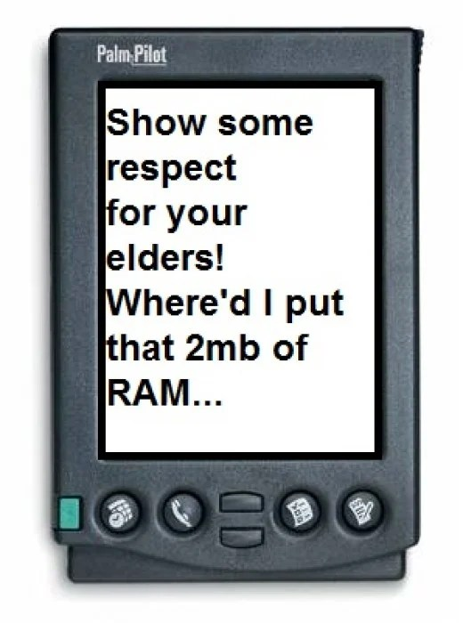Palm HP