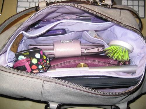 Purse to Go Bag Organizer Review