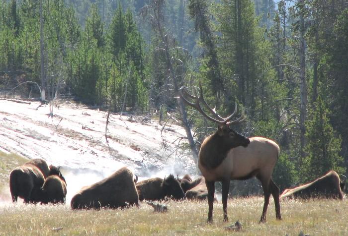 Celebrate National Park Week April 16-24
