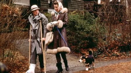 Movie/Book Retrospective: The Accidental Tourist