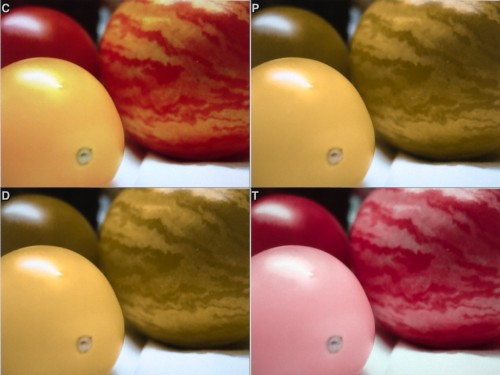 Color Blindness or Do You See What I See? Two Apps That Might Help