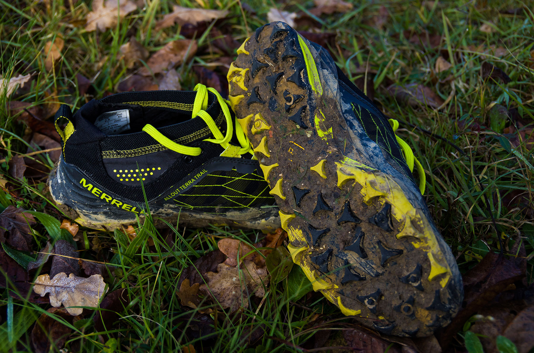 Shoe Review: Merrell All Out Terra Trail