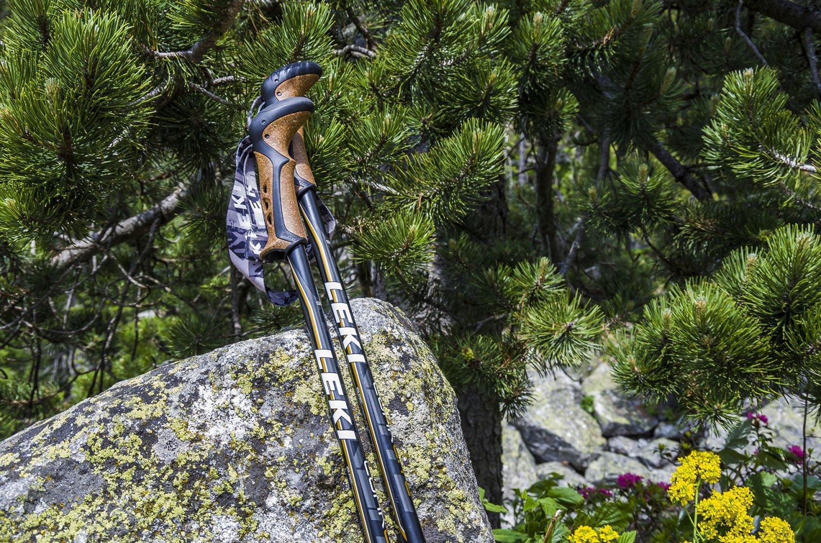 leki-trekking-pole
