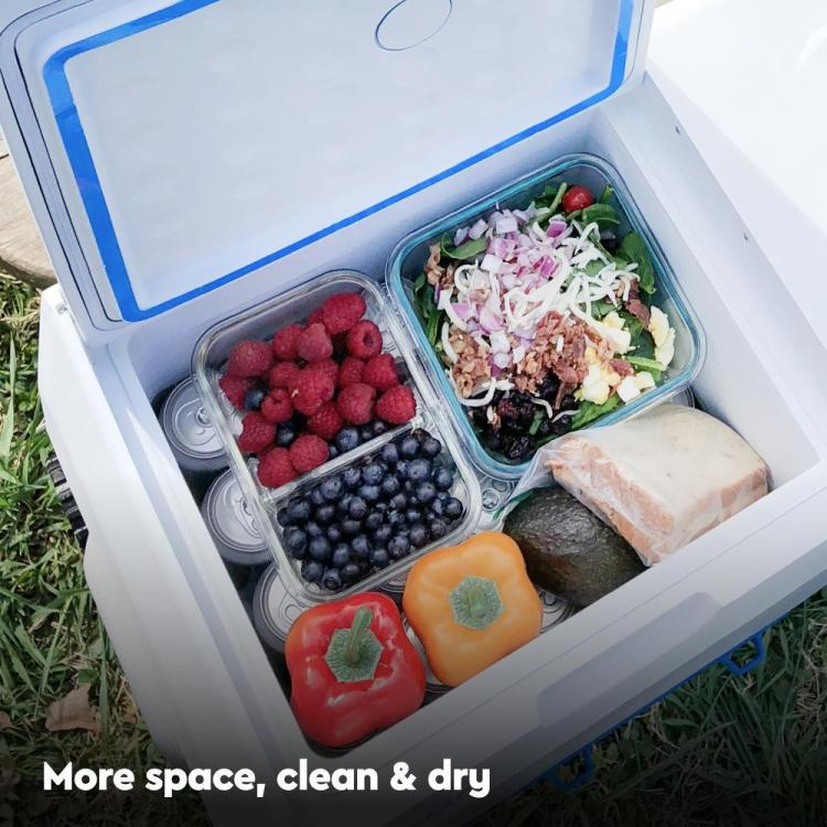 Solar Powered Cooler leaves more space for food
