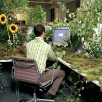 20 Most Pimped Out Office Cubicles  Gears and Widgets