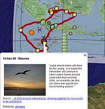 Lydia the Frigatebird in Google Earth