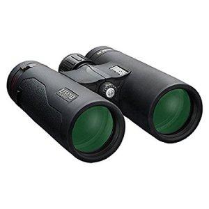 Bushnell Legend L-Series 10x42mm Binoculars