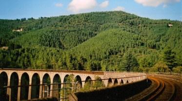 Bridge-is-over