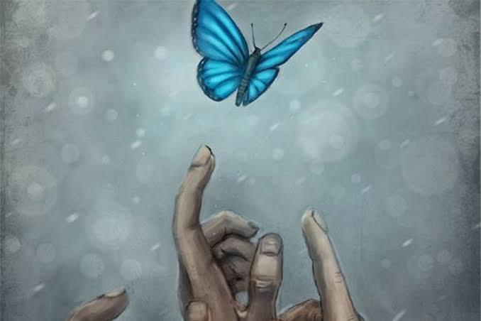 mavi kelebekler