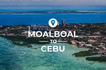 Moalboal to Cebu cover image