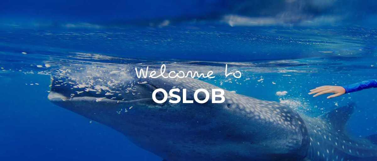 Oslob cover image