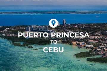 Puerto Princesa to Cebu cover image