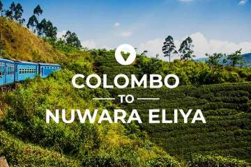 Colombo to Nuwara Eliya route