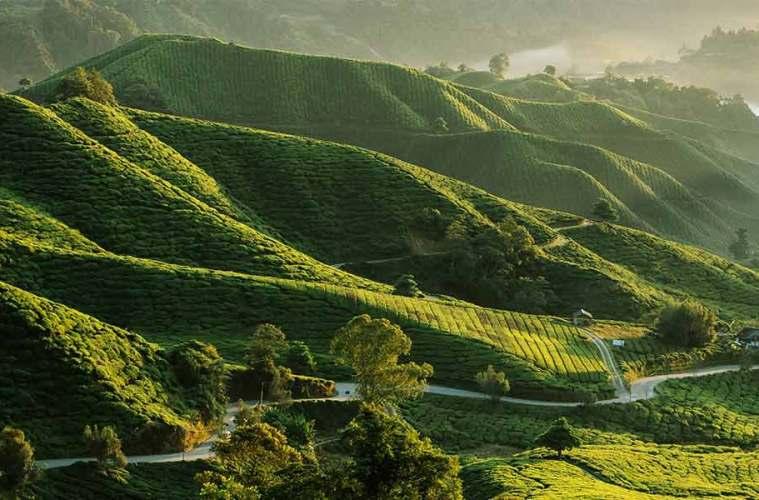 Malaysia travelguide