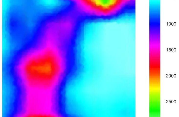 Cross hole sonico: sezione tomografica 2D