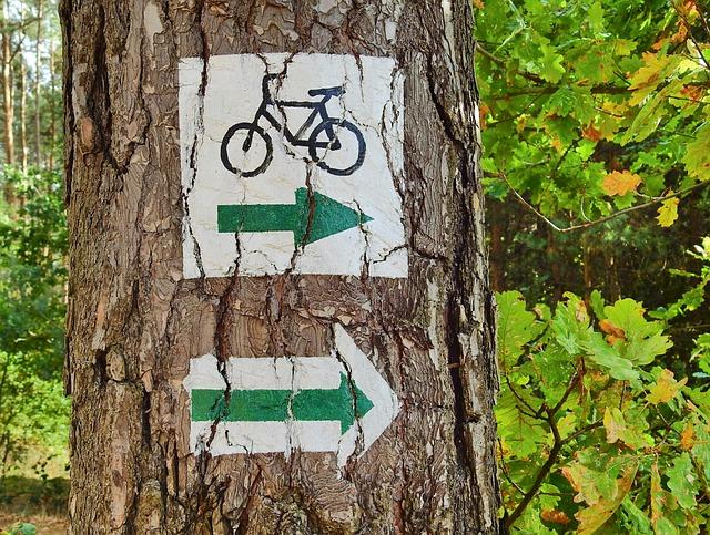 Fahrrad im Burgenland