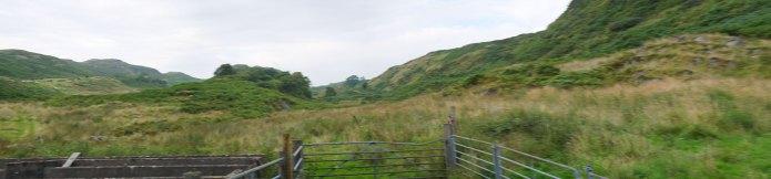 Field, Ardifuir Scotland