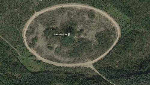 Puuvuori - Tree Mountain by Agnes Danes - Google View