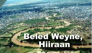 baladwayne
