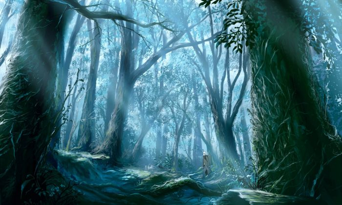 Mushishi - nature