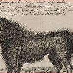 [Histoire - 1764 - 1767 - France] La Bête du Gévaudan