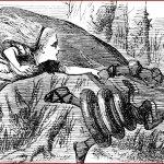 La théorie de la reine rouge & la co-évolution