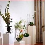 [Culture] Ikebana : l'Art Floral japonais