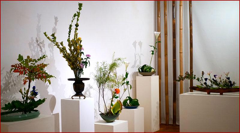 Ikebana : l'Art Floral japonais