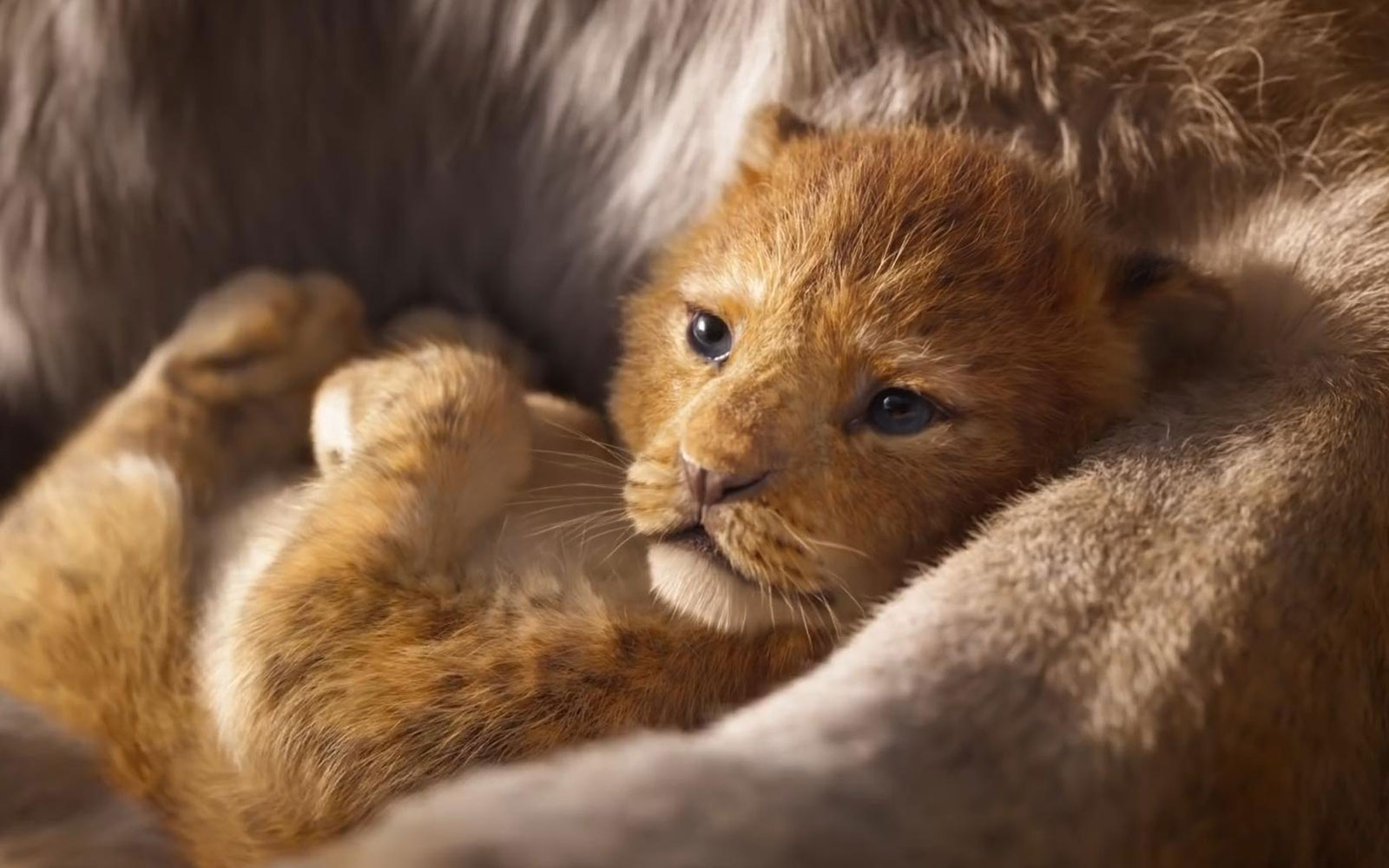 The Lion King  Long Live the King Trailer