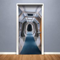 Star Trek TNG Corridor Door Cover