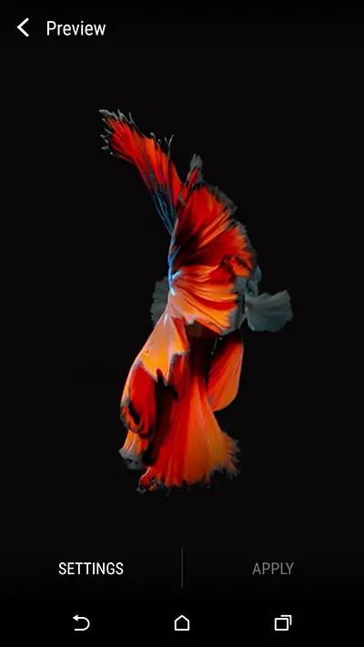 Set-Wallpaper-(iPhone-6s-fish-wallpaper)