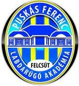 Puskás_Akadémia_FC