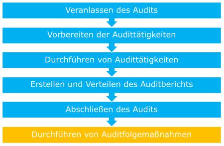 Audit ISO 19011
