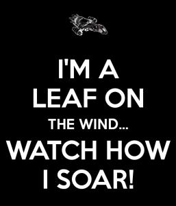 i-m-a-leaf-on-the-wind-watch-how-i-soar