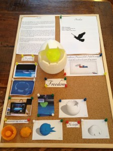 egg project