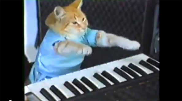 Keyboard Cat will no longer entertain you for free.
