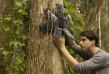 Photo of Rainforest Connection : lutter contre la déforestation avec des smartphones recyclés