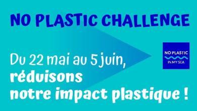 Photo of No Plastic Challenge #2