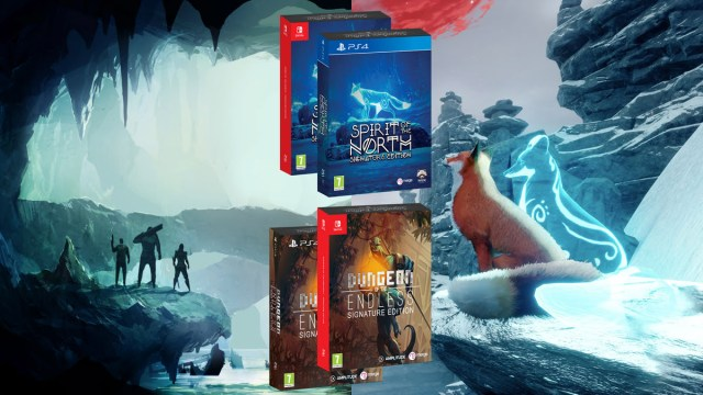 Spirit Of The North et Dungeon Of The Endless – Bientôt en version physique !