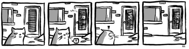 2011-03-02-cat