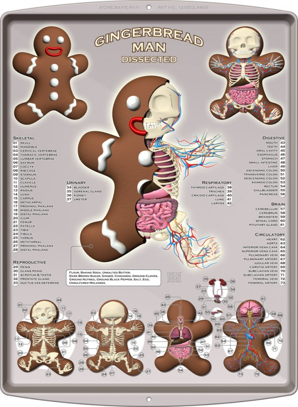 Gingerbread-Man-Bonhomme-Pain-d-epice-Anatomie-Jason-Freeny-Sculpture-Geekorner
