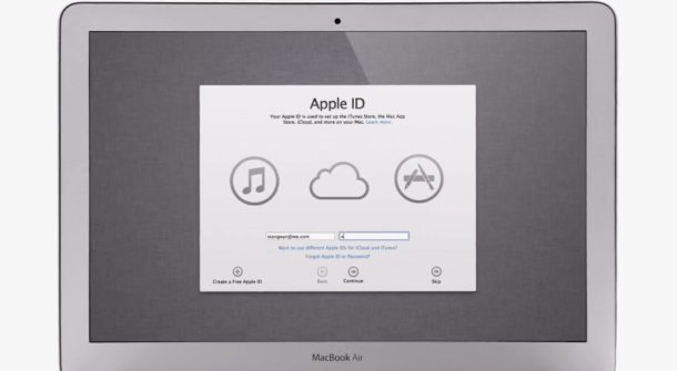 Cloud Mountain Lion 1