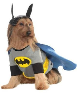 costumes-chien-halloween-18